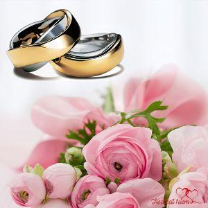 Trauringe hochzeit  Trauringe - Tipps zur Auswahl der Eheringe